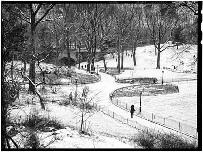 Photograph - Central Park 6 by Wayne Gill