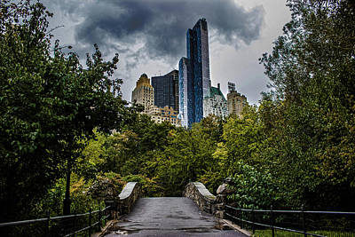 Urban Trees Photograph - Central Park by Martin Newman