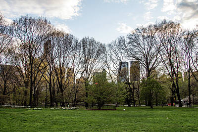 Photograph - Central Park Views  by Robert J Caputo