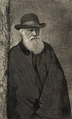 Portrait Old Age Drawing - Charles Darwin,1809  1882. British by Vintage Design Pics