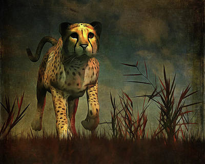 Cheetah Hunting During The African Night Art Print