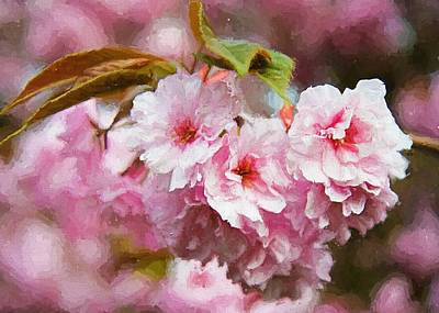 Digital Art - Cherry Blossom by Charmaine Zoe