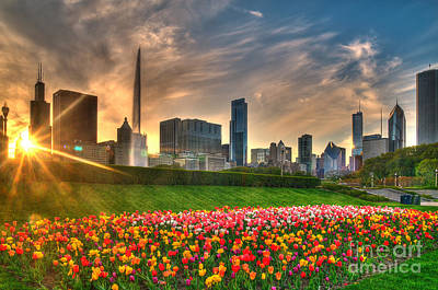 Jeff Lewis Photograph - Chicago Spring by Jeff Lewis