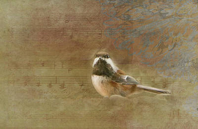 Photograph - Chickadee by Marilyn Wilson