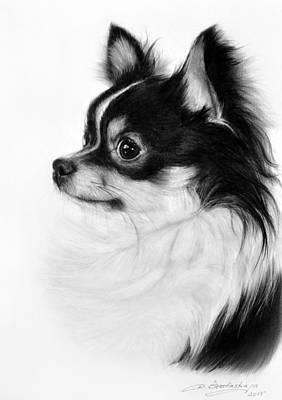 Chihuahua Drawing - Chihuahua Drawing by Danguole Serstinskaja