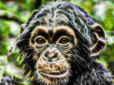 Chimpanzee Collection Art Print