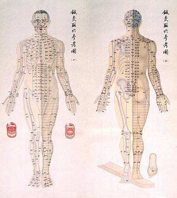 Chinese Chart Of Acupuncture Points Art Print