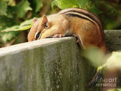Painting - Chipmunk Chillin' On The Railin' by J McCombie