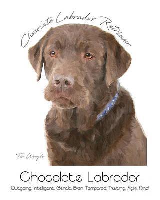Labrador Digital Art - Chocolate Labrador Poster by Tim Wemple