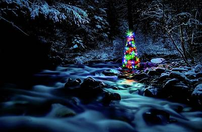 Photograph - Christmas Spirit On Parmenter Creek by Robert Hosea