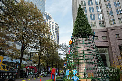 Photograph - Christmas Tree Construction by Kevin McCarthy