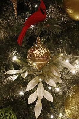 Eve Photograph - Christmas Tree Decorations by American School