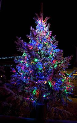 Photograph - Christmas Tree by Tamara Sushko