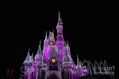Photograph - Cinderella's Castle by Pamela Williams