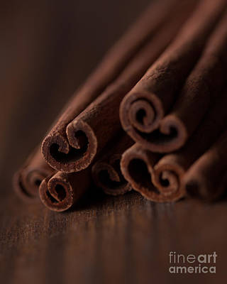 Photograph - Cinnamon Love by Ana V Ramirez