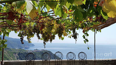 Photograph - Cinque Terre View  by Loriannah Hespe