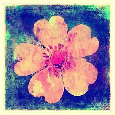 Photograph - Cinquefoil Wildflower Digital Paint 3 by Debbie Portwood