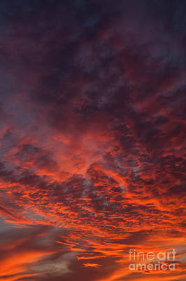 Photograph - Cirrocumulus Clouds At Sunset by Jim Corwin