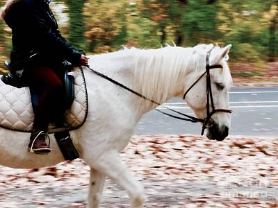Polaroid Camera - City Equestrians  by Mioara Andritoiu