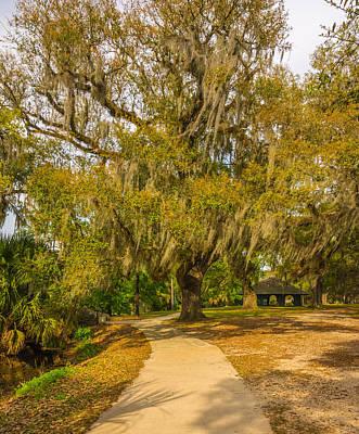 Path Photograph - City Park New Orleans by Steve Harrington