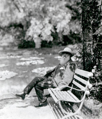 Waterlily Photograph - Claude Monet In His Garden by French School