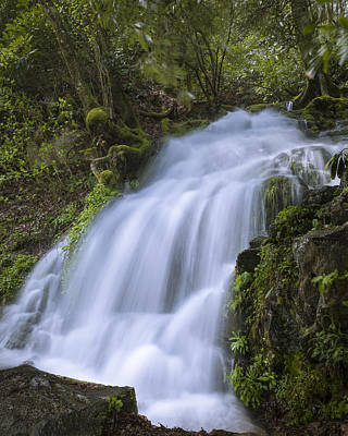Photograph - Cliff Falls Branch by Jack R Perry