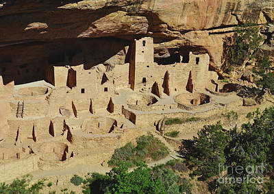 Cliff Palace Mesa Verde Art Print by Debby Pueschel
