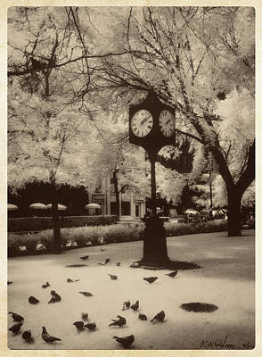 Photograph - Clock Tower Park Chicago 1990 by Garry McMichael