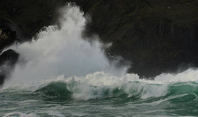 Photograph - Clogher Wave by Barbara Walsh