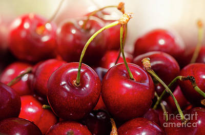 Photograph - Close Up Of Fresh Ripe Red Cherries, Cherry, Fruit by Perry Van Munster