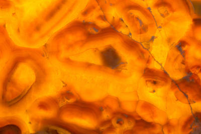 Photograph - Closeup Of Illuminated Gold Onyx Background by John Williams