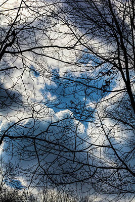 Photograph - Clouds Trees And Sky by Robert Ullmann