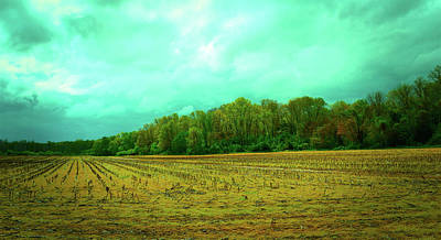 Photograph - Cloudy Autumn Day by Robert Jones