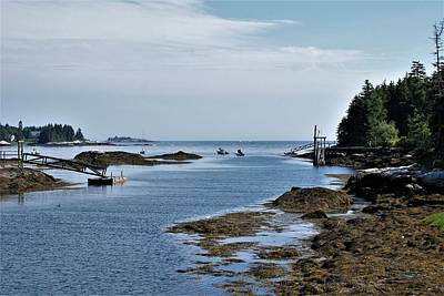 Photograph - Coastal Maine by Lois Lepisto