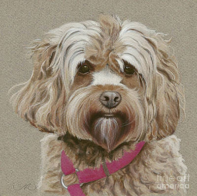 Cocker Spaniel Painting - Cockapoo by Sandra Mehl