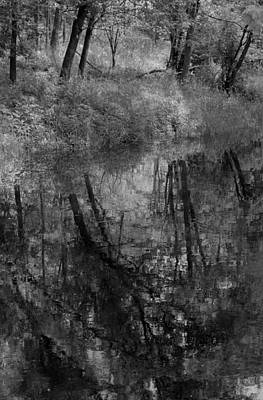 Photograph - Collins Creek Reflections by Jim Vance
