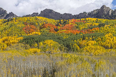 Photograph - Colorado Kebler Pass Fall Foliage  by James BO  Insogna