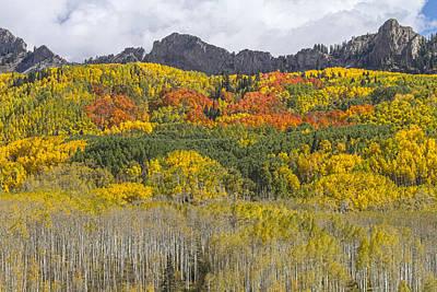 Photograph - Colorado Kebler Pass Fall Foliage  by James BO Insogna
