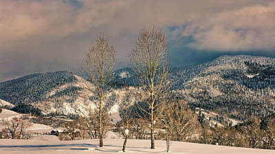 Photograph - Colorado Winter Wonderland by Loc