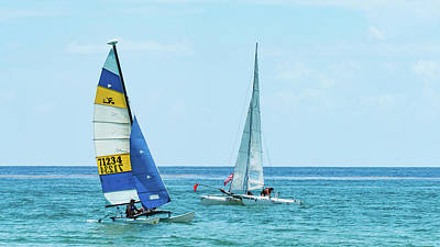 Photograph - Colorful Catamarans 8 Delray Beach Florida by Lawrence S Richardson Jr