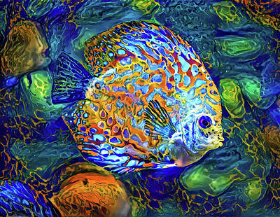 Mixed Media Royalty Free Images - Colorful fish Royalty-Free Image by Lilia D