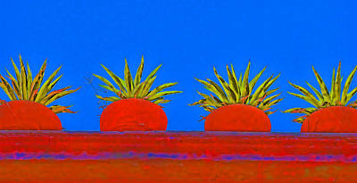 Colorful Potted Plants Mexico Art Print