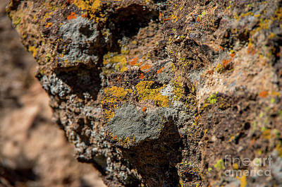 Photograph - Colorful Rocks by Steve Whalen