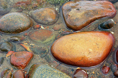 Photograph - Colorful Shore Rocks 10 by Mary Bedy