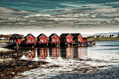 Photograph - Colors Of Norway by Luca Bartoloni