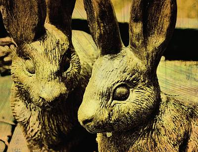 Photograph - Cottontail Art by JAMART Photography