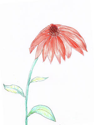 Painting - Cone Flower by Judy Hall-Folde