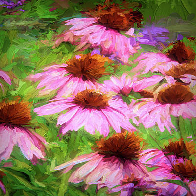 Photograph - Coneflowers by John Freidenberg