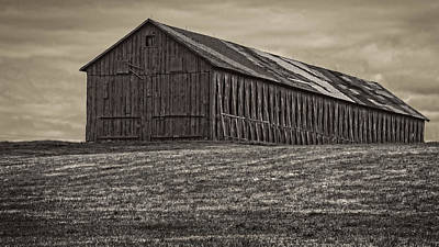 Photograph - Connecticut Tobacco Barn by Phil Cardamone
