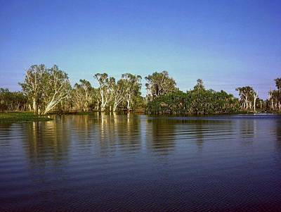 Photograph - Cooinda  by Gary Wonning